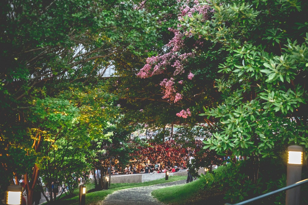 Foliage at the Mann