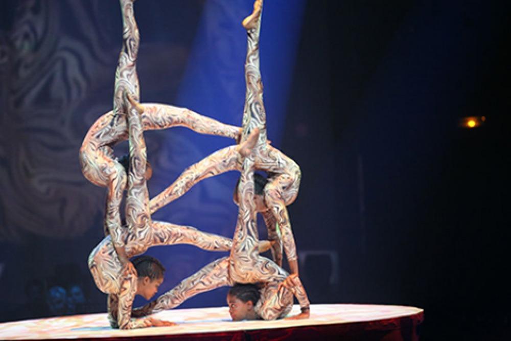 Cirque Zuma Zuma at the Mann in 2013
