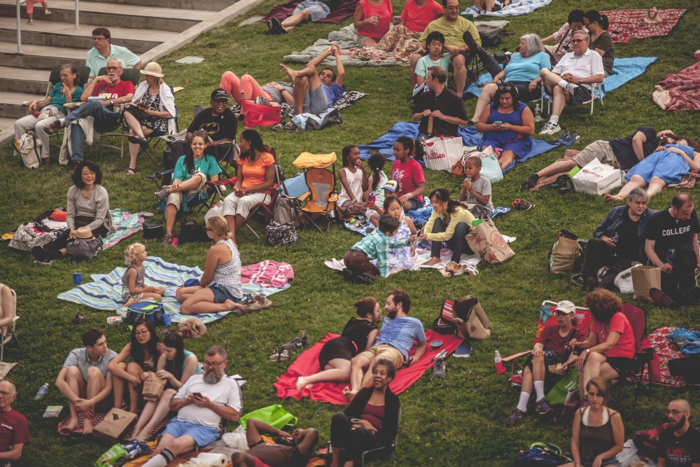 Patrons on the lawn at the Mann