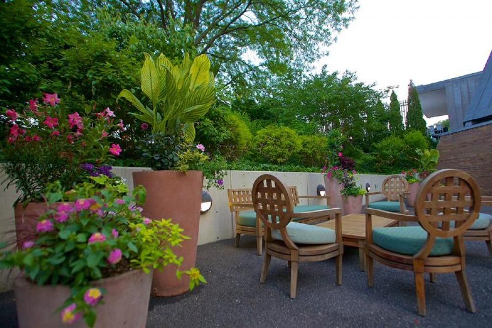 Donor Terrace & Garden