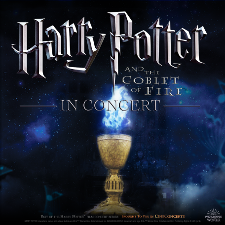 Harry Potter & The Goblet of Fire Admat