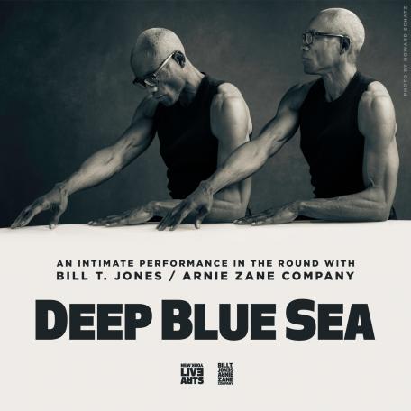 Deep Blue Sea Website