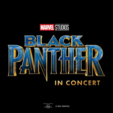 Black Panther In Concert