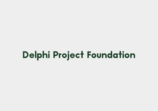 delphia project foundation color
